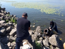 Водолази Тернополя затампували труби через які, ймовірно, забруднюється озеро
