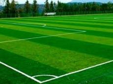 На території ТЗОШ №29 облаштують сучасне футбольне поле зі штучним покриттям
