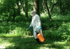 8-9 липня в парках Тернополя проводитимуть заходи зі знищення кліщів