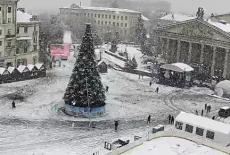 На Театральному майдані встановили головну новорічну ялинку Тернополя